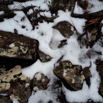 The last bits of snow as we walk the Milles track
