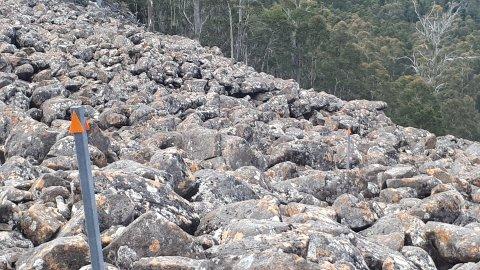 Rocks, rocks and more rocks forever!